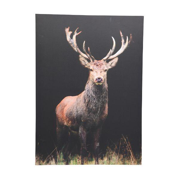 Picture of DARTON Canvas print 50x70cm MTC